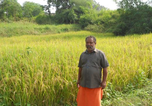 जैविक खेती कर दूसरों को भी इसके गुर सिखा रहा किसान - ले रहे भरपूर उत्पादन