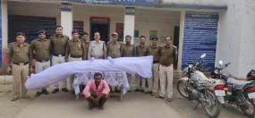 हो रही थी गांजा की खेती - 25 किलो माल के साथ आरोपी गिरफ्तार