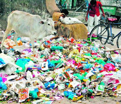 सार्वजनिक स्थानों पर कचरा जलाने पर  777 शिक्षा संस्थाओं और 120 अस्पतालों पर मनपा का जुर्माना