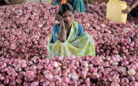 "मध्यप्रदेश: प्याज खा रही है ""भाव"", फिर बिक रही 80 रु किलो"