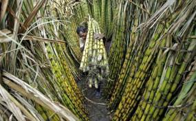गन्ना किसानों के लिए राज्यपाल से मिले एमएनएस नेता
