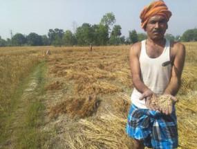 बेमौसम बारिश के बाद सरकारी मशीनरी की मार, तीन दिन बाद भी जीआर नहीं पहुंचा
