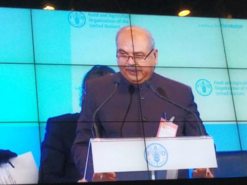 रोम में बीज संधि निकाय के सत्र में शामिल हुए नरेंद्र सिंह तोमर, कहा- खाद्य सुरक्षा की कीमत पर कोई समझौता संभव नहीं
