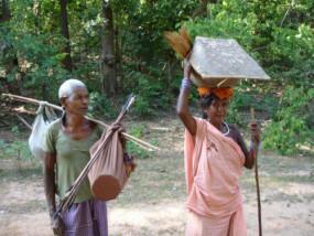 आज भी जंगल पर निर्भर हैं आदिवासी, वनोपज केन्द्र शुरू होने से सुधर सकेगी दशा