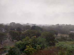 नागपुर में बेमौसम बारिश ने बढ़ाई ठिठुरन, चारों तरफ घना कोहरा