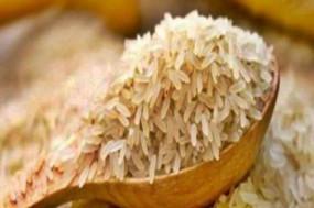 बासमती चावल का निर्यात 10 फीसदी गिरा, गैर-बासमती 37 फीसदी