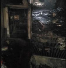 दिल्ली अग्निकांड: राष्ट्रपति-प्रधानमंत्री ने जताया शोक, सोनिया गांधी ने सहायता के लिए की अपील