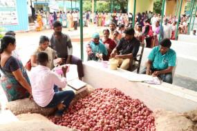 दिल्ली में प्याज का दाम नरम, कई शहरों में 150 के ऊपर खुदरा भाव