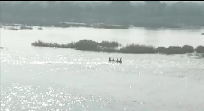 प्राणहिता नदी में पलटी छोटी नाव, वन विभाग के दो अधिकारी लापता