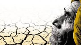 5 साल में नागपुर विभाग में 1592 किसानों की आत्महत्या