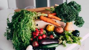 Superfood: सर्दियों में करें इन फूड्स का सेवन, इम्यून सिस्टम होगा इम्प्रूव