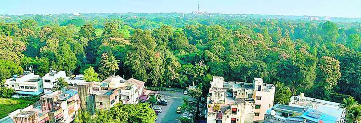 'भारत वन' क्षेत्र में 18 मीटर चौड़ी सड़क निर्माण का प्रस्ताव खारिज, नहीं मिली पेड़ काटने की अनुमति