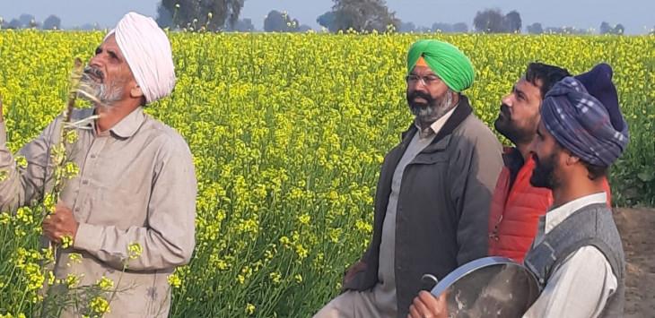 मप्र में कर्जदार किसानों को मुसीबत से बचाने की कोशिश