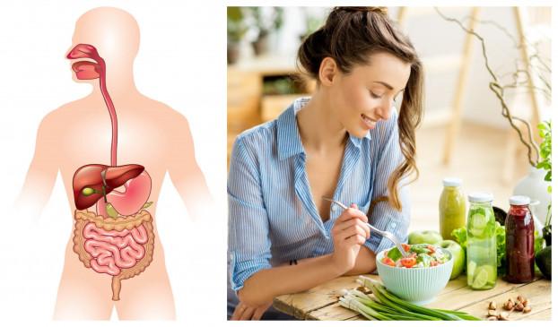 Health: Know The Process Of Digestion Of Food In Our Body | हेल्थ: क्या आप जानते हैं खाना पचने की प्रोसेस, शरीर में लंबी प्रक्रिया होती है संचालित -
