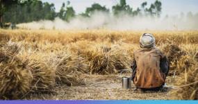 कृषि क्षेत्र में विदेशी कंपनियों का एकाधिकार करें खत्म, तब रुकेगी किसान आत्महत्या