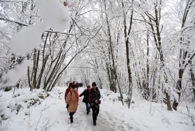 शिमला, मनाली, डलहौजी में और अधिक बर्फबारी