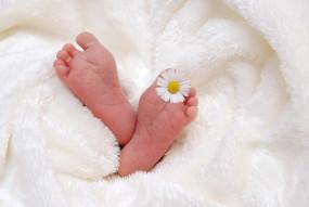 मप्र : रतलाम में दो माह में 90 नवजात शिशुओं की मौत, जांच जारी