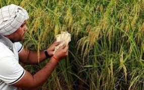 सरकार ने दिए किसान कर्ज की ब्याज वसूली रोकने के आदेश