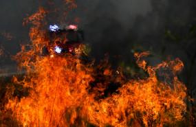 पाकिस्तान ने ऑस्ट्रेलिया के जंगलों में लगी आग बुझाने की पेशकश की