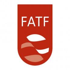 एफएटीएफ की कार्य-योजना लागू करे पाकिस्तान : अमेरिकी राजदूत