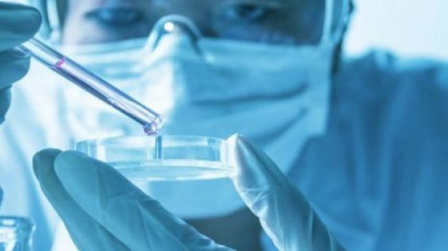 कोरोना का डर : संदिग्ध मरीज मेडिकल के विशेष वार्ड में भर्ती, इस लैब में होगी जांच
