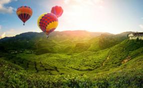Travel: नेचर और एडवेंचर लवर के लिए मलेशिया का कैमरून हाइलैंड्स है खास