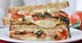 Snacks: शाम के नाश्ते के लिए बेस्ट है वेज चीज सैंडविच, बच्चों को आएगा पसंद