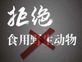 चीन ने अवैध वन्यजीव व्यापार पर प्रतिबंध लगाया