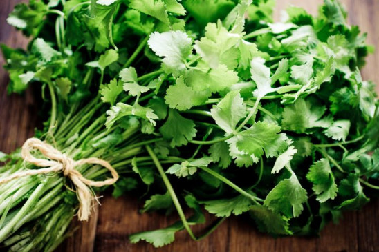 Health: सिर्फ सब्जियों में स्वाद ही नहीं बढ़ाता, कई बीमारी को दूर करता है हरा धनिया