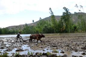 वित्तमंत्री ने भाजपा की मांग अनुरूप गांव, गरीब, किसान बजट पेश किया