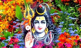 महाशिवरात्रि: शिव की पूजा के दौरान चढ़ाएं ये फूल, जानें इनके बारे में