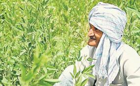 कर्ज मुक्ति का श्रीगणेश : 68 किसानों के खाते में जमा हुए 60 लाख रुपए