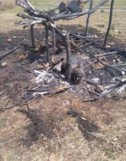 खेत में बनी झोपड़ी में लगी आग, तीन बच्चे जिंदा जले -मृतक बच्चे एक ही परिवार के