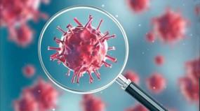 Coronavirus in MP: इंदौर में 17 नए मामले सामने आए, प्रदेश में अब तक 64 संक्रमित, 4 की मौत