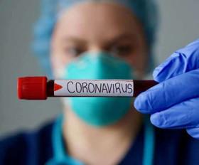 Coronavirus in India Live Update: मप्र में कोरोना से तीसरी मौत, कश्मीर में मिले चार नए मरीज, देश में कुल 1209 मामले