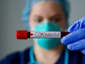 Coronavirus News: ट्रंप के दफ्तर तक पहुंचा कोरोना, एक ऑफिसर पॉजिटिव, दुनियाभर में 11 हजार से ज्यादा मौतें