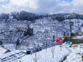Snowfall: बर्फ की सफेद चादर से ढकीं हिमाचल की वादियां, तस्वीरों में देखिए यहां के खूबसूरत नजारे