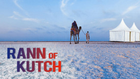 Travel: गुजरात में सफेद नमक का रेगिस्तान है खास, जानिए रण ऑफ कच्छ के टॉप टूरिस्ट स्पॉट