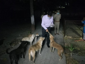 लॉकडाउन यूपी : भूखे लावारिस कुत्तों को डीआईजी ने खाना खिलाया