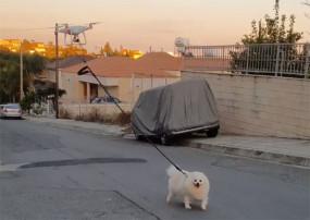 Coronavirus Lockdown: ड्रॉन के साथ कुत्ते ने की सैर, देखें वीडियो