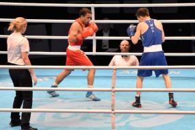 ओलंपिक मुक्केबाजी क्वालीफायर : पंघल और लवलिना को सेमीफाइनल में मिली हार