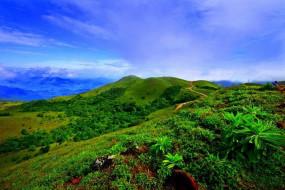 Travel: भारत का स्कॉटलैंड है कूर्ग, घूमने जाए तो इन जगहों को करें ट्रिप में शामिल