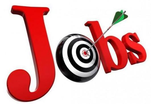 Jobs: जूनियर इंजीनियर, लेखाकार सहित स्टॉफ नर्स के पदों पर भर्तियां, पढ़ें पूरी डिटेल यहां