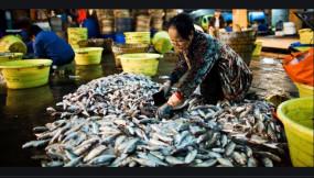 Coronavirus: चीन के वुहान शहर में झींगे बेचने वाली इस महिला से पूरी दुनिया में फैला कोरोना वायरस, इलाज के बाद जिंदा बच गई