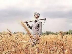 18 लाख 89 हजार 528 किसानों को मिला किसान कर्जमाफी का लाभ