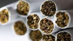 रिसर्च: सिगरेट पीने वालों की तुलना में नॉन स्मोकर्स को कोरोना का ज्यादा खतरा