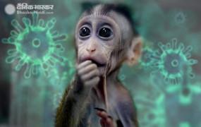 Good News: इस देश की वैक्सीन ने कोरोना संक्रमित बंदरों को किया ठीक, अब इंसानों पर ट्रायल जारी