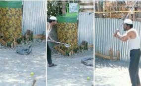 क्रूरता: नाग-नागिन के जोड़े को पिता ने फर्से से काट डाला, बेटा बनाता रहा वीडियो