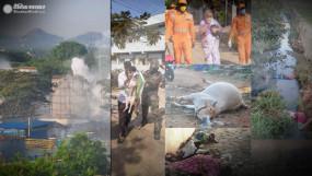#VizagGasLeak: एलजी पॉलिमर्स इंडस्ट्री से जहरीली गैस लीक, 11 की मौत, CM जगन ने किया मुआवजे का ऐलान
