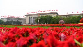 चीन के खुलेपन से विश्व की आर्थिक बहाली को मदद मिलेगी